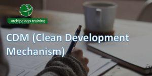 CDM (Clean Development Mechanism)