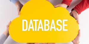 Powerful Database Analysis & Dashboard Reporting With Excel 2010